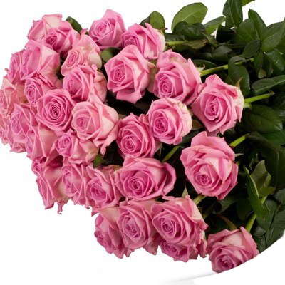 Купити троянди у Львові