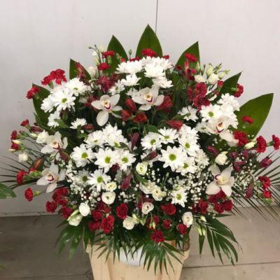 Квіти львів церква