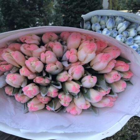 Львів купити квіти
